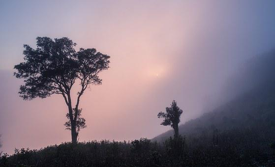 Sa Pa, Lao Cai, Yen Bai, Travel, Sky, Scenery, Asia