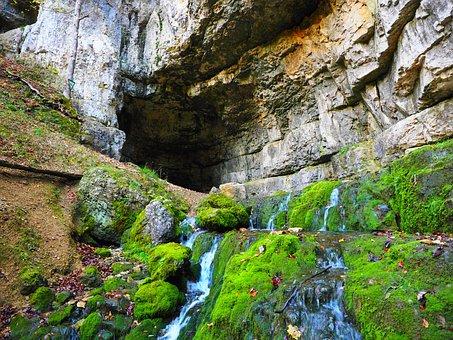Elsach, River, Water, Moss, Overgrown, Stones