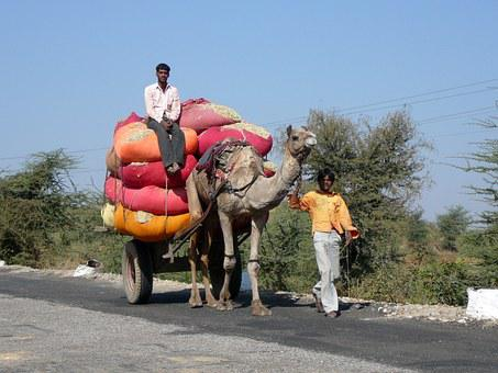 India, Transport, Desert Ship, Overloaded, Traffic