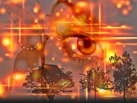 Eye, Butterfly, Evening, Sky, Light Effect, Woman
