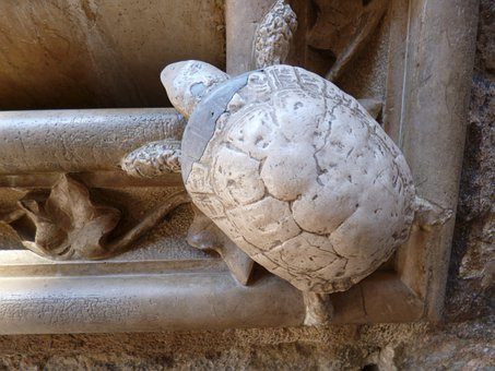 Turtle, Stone, Ornament, Sculpture, Fig, Stonemasonry