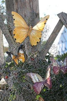 Creative Market, Butterfly, Craft, Tinker, Mural