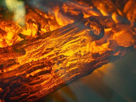 Bonfire, Burn, Campfire, Coal, Color, Danger, Ember
