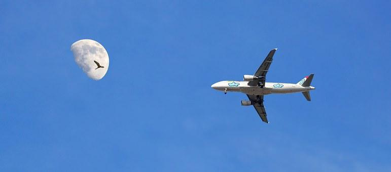 Plane, Moon, Ceu, Blue Sky, Seagull, Day, Nature