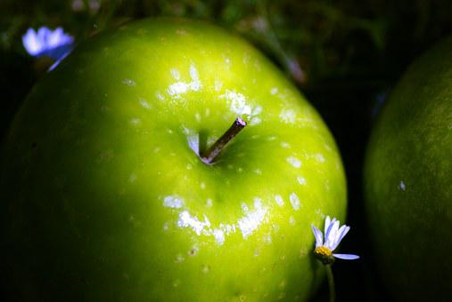 Apple, Shine, Daisy, Garden, Natural Fruit Diet, Green