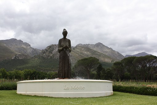 South Africa, Estate Of La Motte, Winery, La Motte, Fig