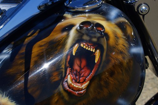 Bear, Paintwork, Motorbike, Motorcycle, Varnishing