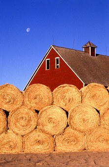 Hay Bales, Farm, Hay, Countryside, Summer, Dry, Warm