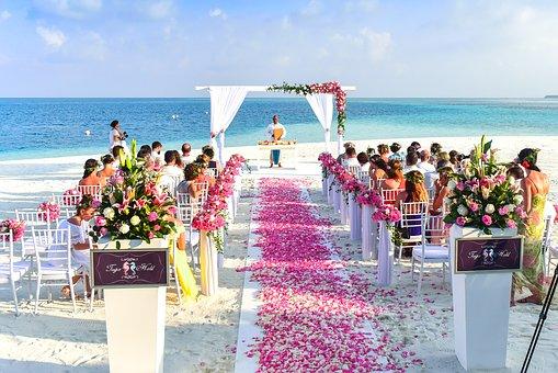 Aisle, Beach, Celebration, Ceremony, Chairs