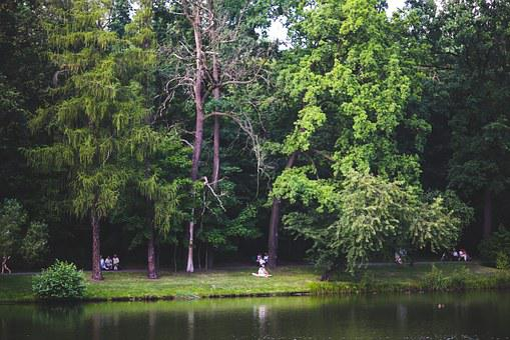 People, Walk, Park, Green, Garden, Trees, Nature