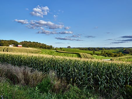 Wisconsin, Landscape, Scenic, Nature, Outside, Outdoors