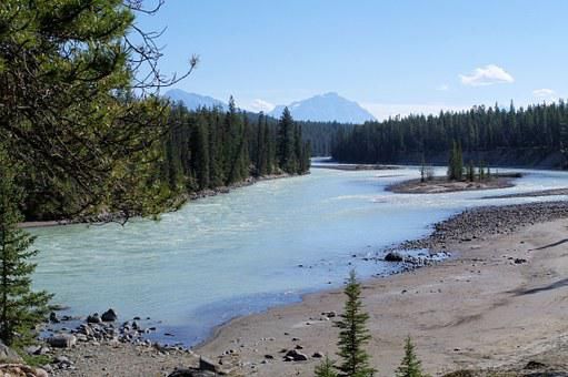 Jasper Provincial Park, River, Stream, Alberta, Canada