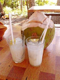 Drink, Coconut, Tropical, Fruit, Fresh, Milk, Healthy