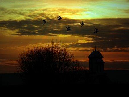 Landscape, Sky, Birds, Church, Tree, Cloud