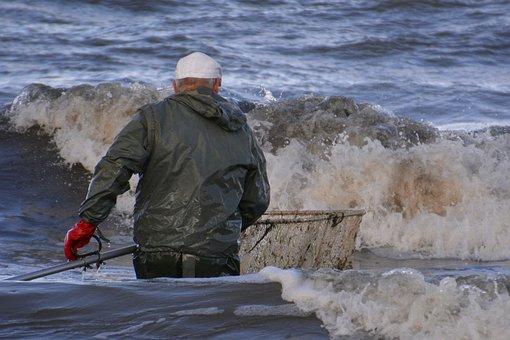 Baltic Sea, Amber Seeking, Poland, Fish