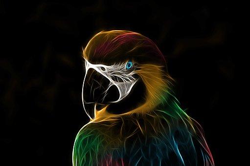 Parrot, Ara, Bird, Colorful, Fractalius