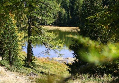 Hiking, Pond, Biotope, Landscape, Alpine, Autumn