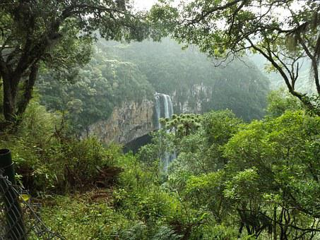 Forest, Waterfall, Trees, Green, Landscape, Vegetation