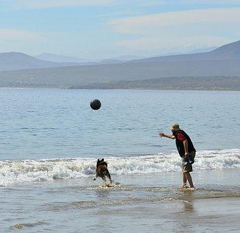 Beach, Game, Man, Dog, Coquimbo, Guanaqueros, Iv Region