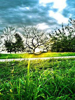 Sunset, Orchard, Landscape, Fruit Tree, Hdr, Meadow