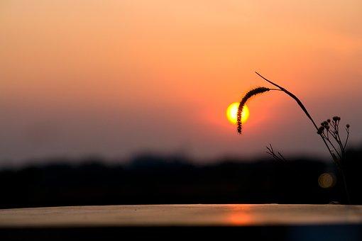Sunset, Sun, Summer, Sky, Vacation, Outdoor, Lifestyle