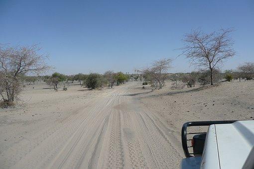 Track, Africa, Sand, Desert, Sahel, 4x4, Bush, Sahara