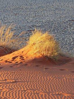 Dunes, Namibia, Sand, Desert, Grasses, Africa, Nature