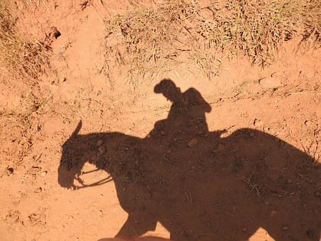 Horse, Shadow, Earth, Man On Horse, Desert
