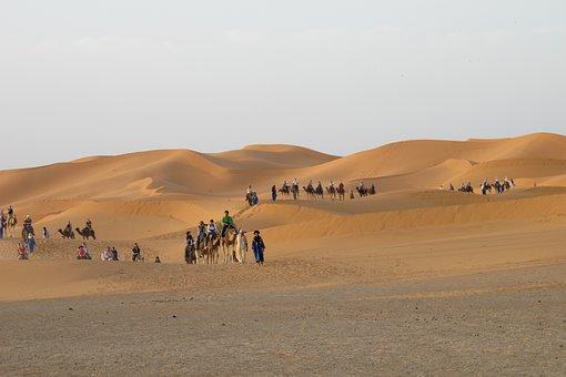 Desert, Merzouga, Dunes, Morocco