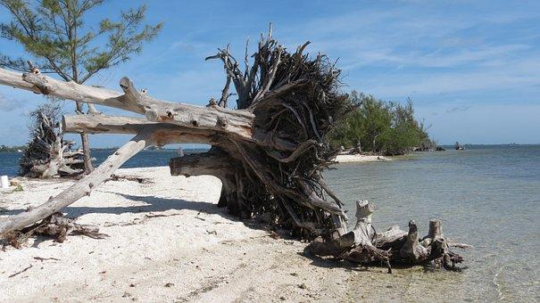 Beach, Desert Island, Island, Sand, Tropical, Landscape