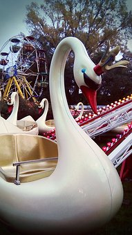 Swan, Roundabouts, Pilgrimage, Attraction