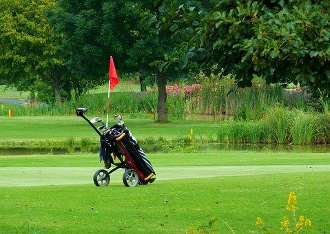 Golf Caddy, Golf, Green, Caddy, Golf Carts, Sport