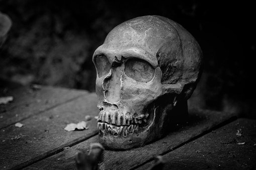 Skull, Death, Black White, Bw, Weird, Skull Bone