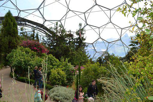 Eden, Project, Cornwall, Environment, Ecology, England