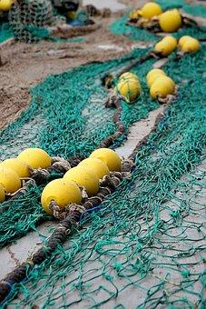 Fishing Net, Port, Fishing, Network, Safety Net