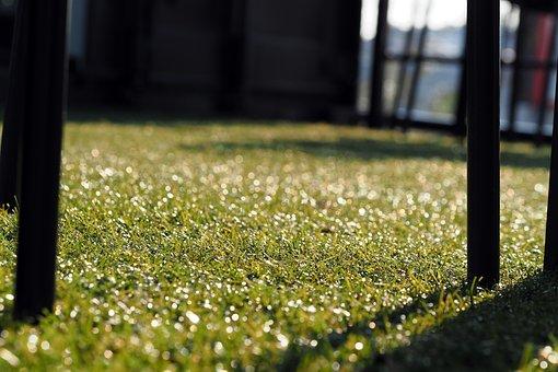 Chair, Artificial Grass, Golf Club, Grass, Green