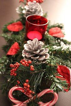 Christmas, Red, Money, Green, Fir, Festival