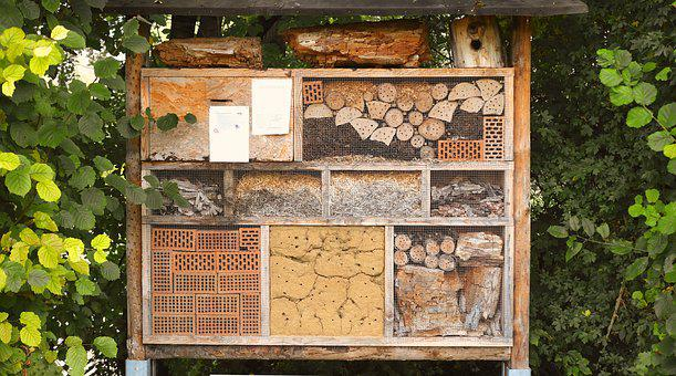 Insect House, Nature Conservation, Hibernate