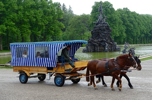 Horse And Cart, Wagon, Transportation, Carriage