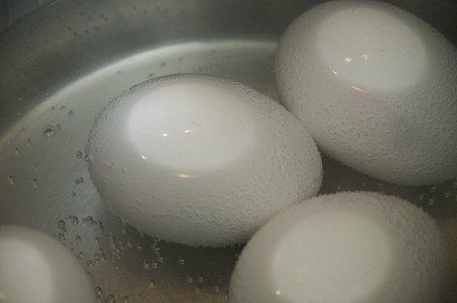 Egg, Brown Eggs, Pot, White, Boil Water, Hot