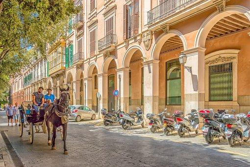 Palma, Majorca, City, Horses, Horse, Tandem, Motorbike