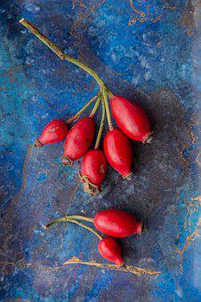 Rosehip, Rosebush Seed, Red, Blue