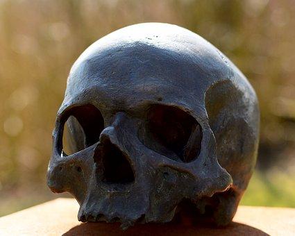 Skull And Crossbones, Skull, Human, Head, Face, Bones