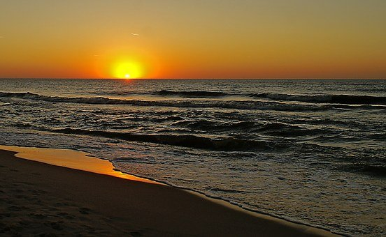 Sunset, Evening, Silhouettes Of Trees, On The Beach