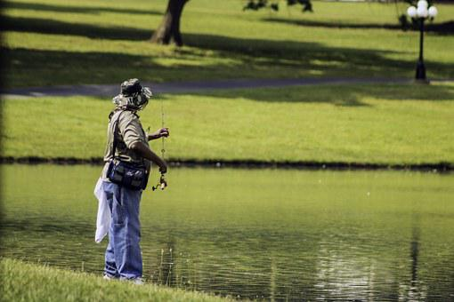 Gone Fishing, Fishing, Person Fishing, Activity, Water