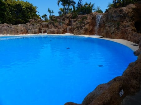 Pool, Sea Basin, Water, Blue, Lagoon, Artificial
