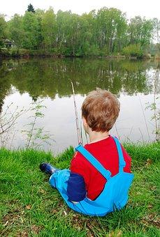 Fishing, Boy, Child, Fishing Rod, Pond, Fisher