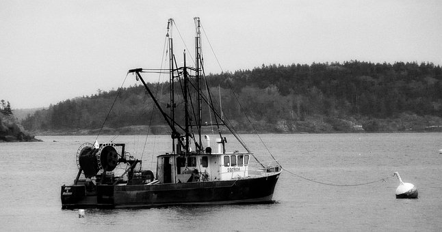 Fishing, Trawler, Boat, Pacific, Black And White, Ocean