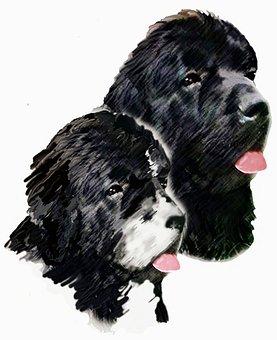 Painting, Dogs, Newfoundland Dogs, Landseer, Animals