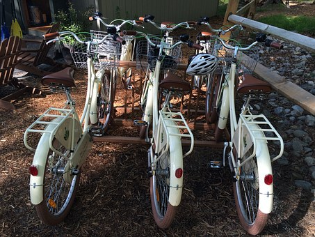 Bike, Bicycle, Travel, Biking, Cycling, Activity, Sport
